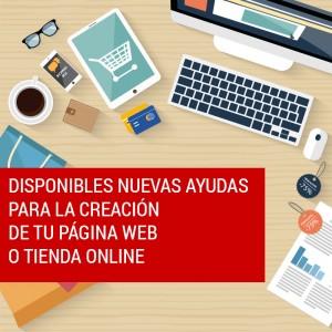 ayudas para crear web y tienda online