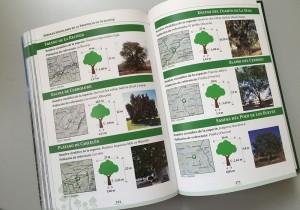 árboles_singulares_IEA_GrupoEnuno_06