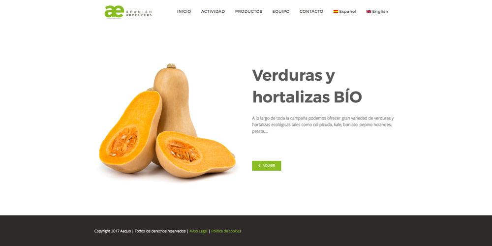 Nuevo diseño web para Aequo GB 2